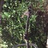 b8457154-bb55-447a-ad7a-50de6c7ffe9f_cdv_photo_001-721ch6wqx8x
